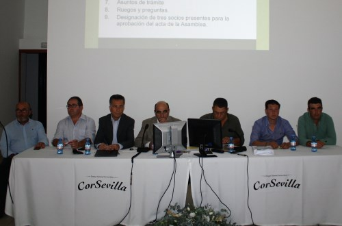 Consejo-Corsevilla-2019