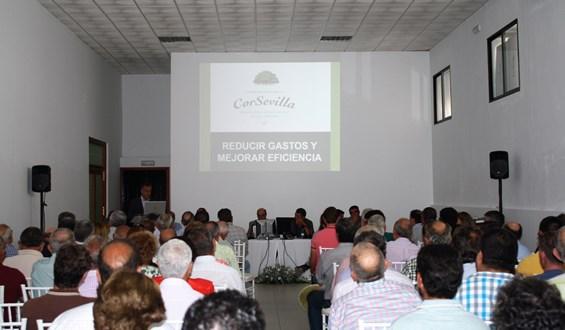 Socios-Asamblea-Corsevilla-2019