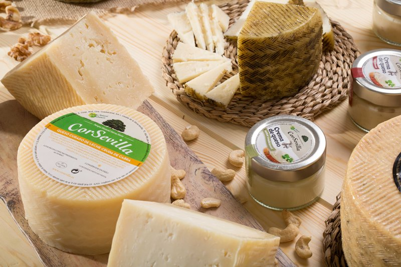 dia del queso