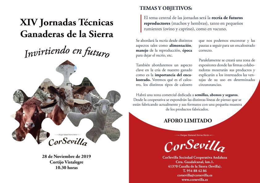 Jornada Técnica Corsevilla 2019