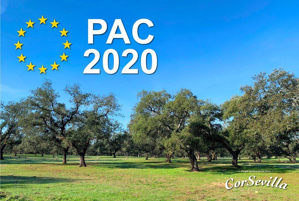 PAC 2020 gestión