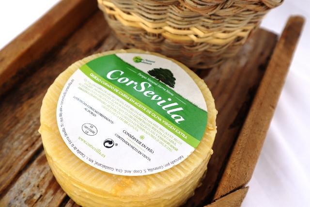 queso-aceite-oliva-corsevilla