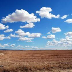 campo-pasto-cielo
