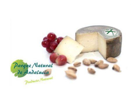 queso cabra curado calidad certificada
